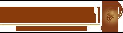 Lednorm Nederland Logo